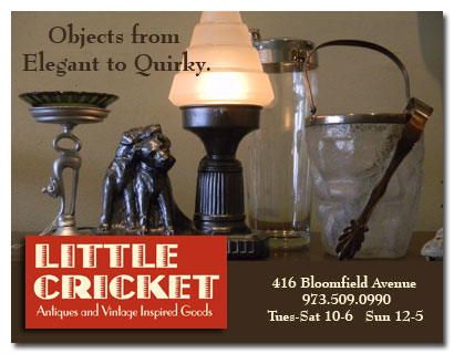 Email Little Cricket now.